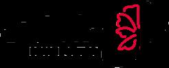 Firma Adkor - sprzedaż kwiatów sztucznych | Częstochowa
